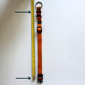mesurer collier